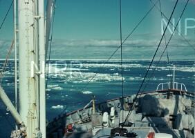 NIPR_001081.jpg