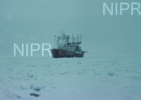 NIPR_001088.jpg