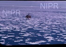 NIPR_001304.jpg