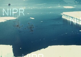 NIPR_001305.jpg