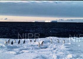 NIPR_001327.jpg