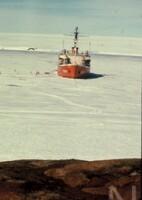 NIPR_001339.jpg