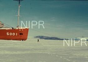 NIPR_001340.jpg