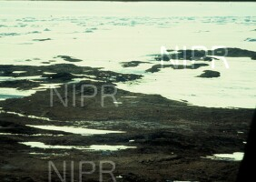 NIPR_001407.jpg