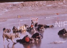 NIPR_001578.jpg