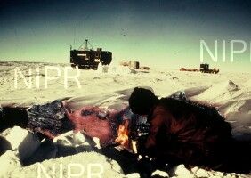 NIPR_001641.jpg