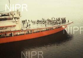 NIPR_001888.jpg