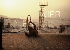 NIPR_001917.jpg