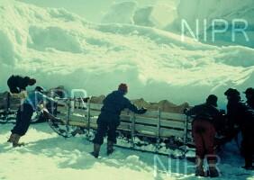 NIPR_001941.jpg