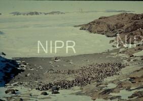 NIPR_002191.jpg