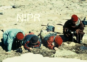 NIPR_002327.jpg