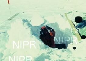 NIPR_002345.jpg