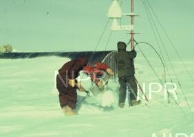 NIPR_002384.jpg