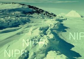 NIPR_002490.jpg
