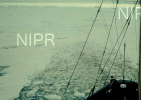 NIPR_002528.jpg