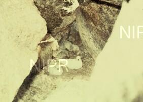 NIPR_002610.jpg