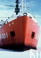 NIPR_002629.jpg
