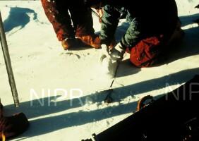 NIPR_002876.jpg