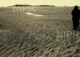 NIPR_003002.jpg