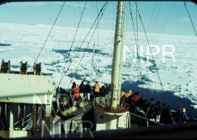 NIPR_003054.jpg
