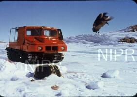 NIPR_003161.jpg
