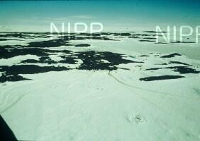 NIPR_003208.jpg