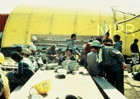 NIPR_004517.jpg