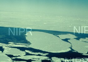 NIPR_004592.jpg