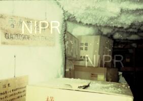 NIPR_004819.jpg