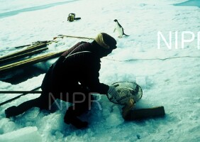 NIPR_005008.jpg