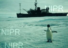 NIPR_005013.jpg