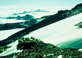 NIPR_005052.jpg