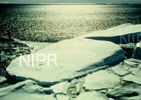 NIPR_005063.jpg