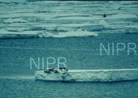 NIPR_005154.jpg