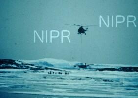 NIPR_005163.jpg