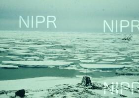 NIPR_005230.jpg