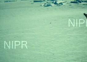 NIPR_005474.jpg