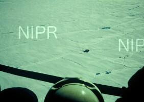 NIPR_005475.jpg