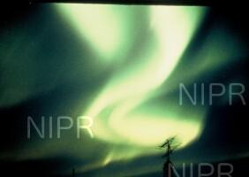 NIPR_005800.jpg