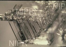 NIPR_006249.jpg