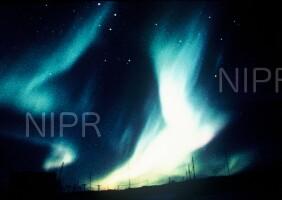 NIPR_006310.jpg