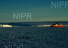 NIPR_006337.jpg