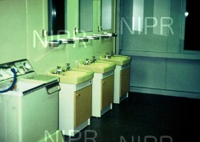 NIPR_006437.jpg
