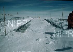 NIPR_006707.jpg