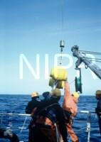 NIPR_007116.jpg