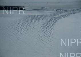 NIPR_007166.jpg