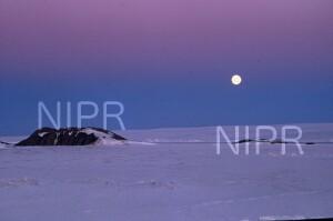 NIPR_007454.jpg