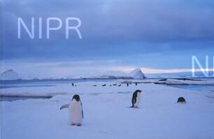 NIPR_009451.jpg
