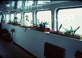 NIPR_009462.jpg