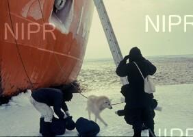 NIPR_009744.jpg